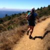... and another pack run on the Dipsea.