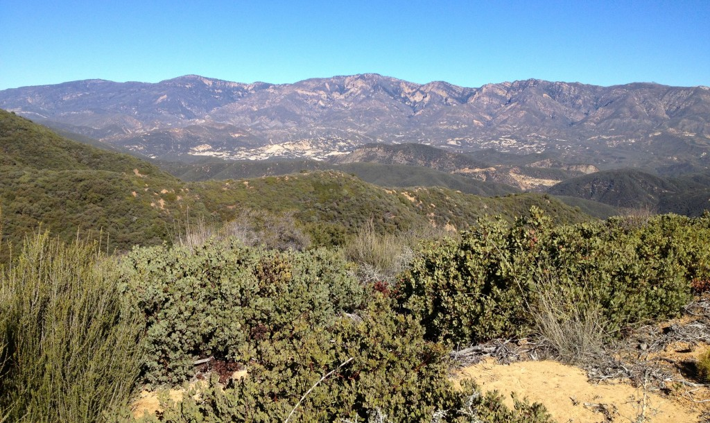 Looking down from the ridge at the Sespe Wilderness.
