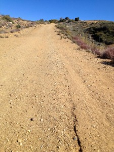 A typical stretch of Nordhoff Ridge Road running east between Gridley and Chief Peak: exposed and uphill!