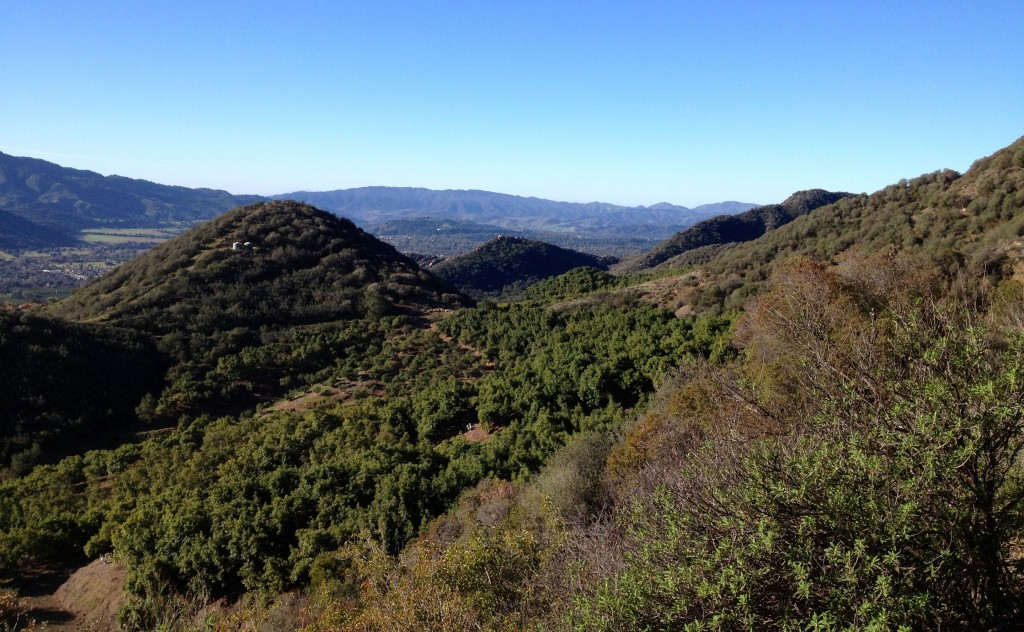The Ojai Valley looking west from about a mile up Gridley Trail. The coast and Santa Barbara are on the other side of those mountains.