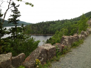 "These granite blocks, aka ""Rockefeller's teeth,"" line all the roadways around Acadia National Park."