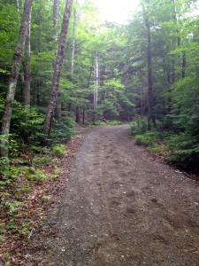 The multipurpose trail in Camden Hills State Park