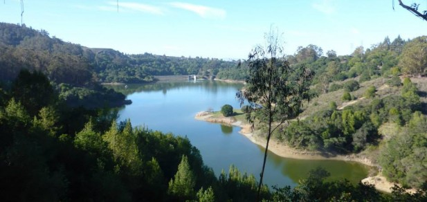 Inside Trail's 3rd Annual Lake Chabot Race: A Success Story After an Inauspicious Start