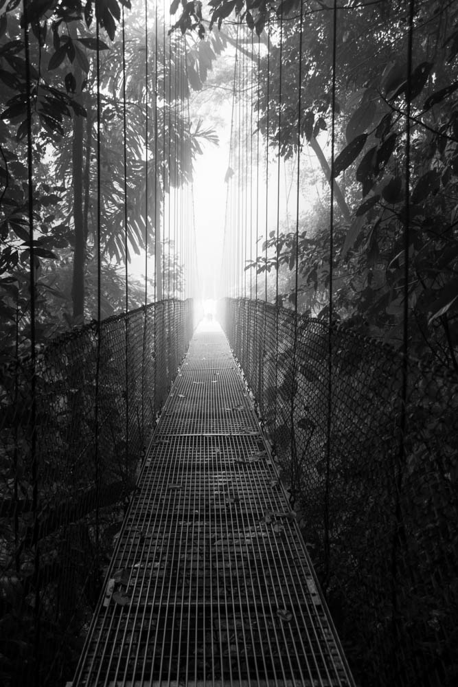 Hanging bridge in black and white, by Colly Smith