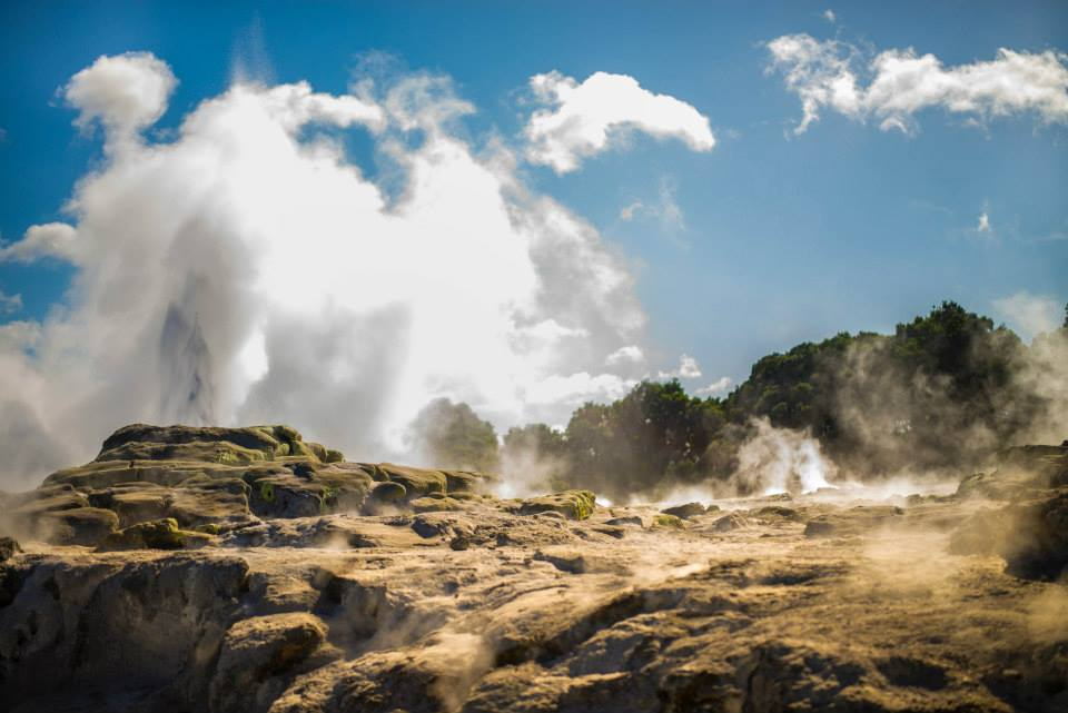 The Pohutu Gyser in Rotorua. Photo by Morgan