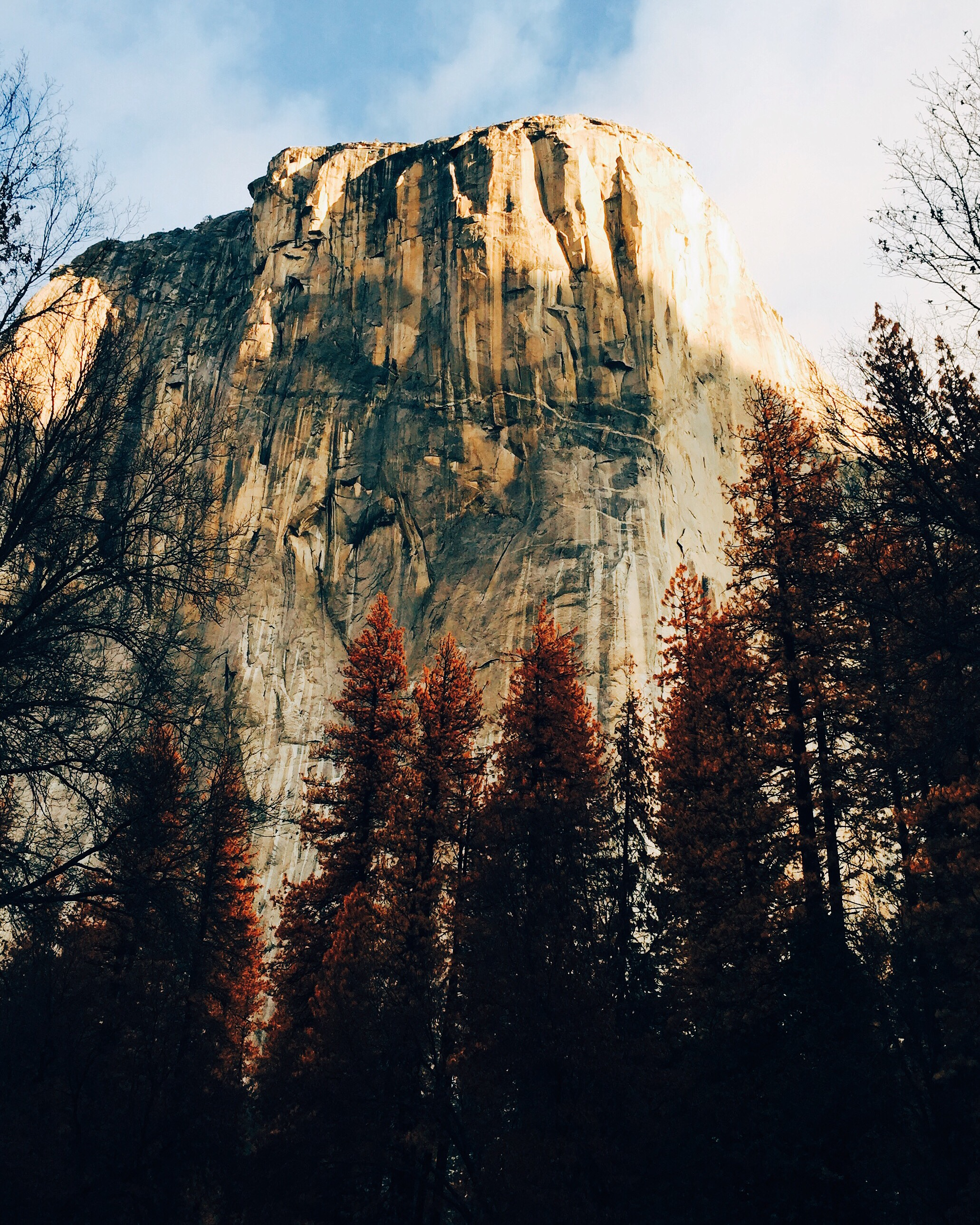 El Capitan, photographed by my daughter Colly Smith, as we left the park yesterday morning.